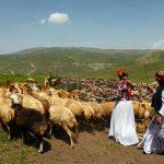 چالدران آماده میزبانی از عشایر شمال آذربایجان غربی است