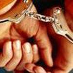 4 سارق حرفه ای در ماکو دستگیر شدند