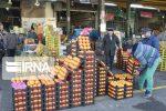 ۴۰ تن میوه شب عید در شوط توزیع میشود