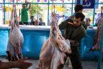 ۳۷۰ تن گوشت قرمز در ماکو تولید شد